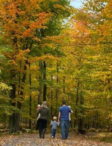 Northern Wisconsin Fall Vacation Lodging